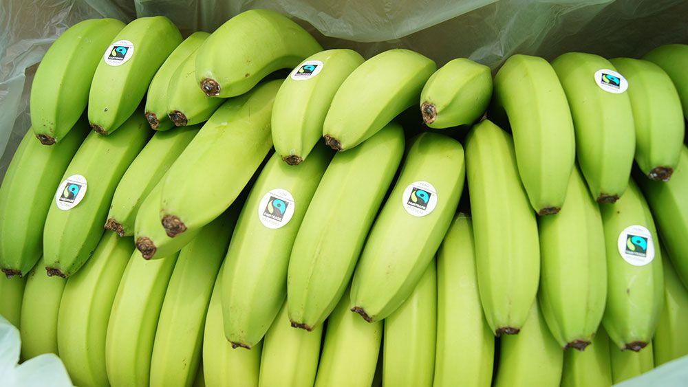 Dieta de la banana foro
